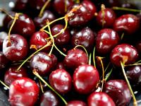 L1FD11 - Close Up Dark Red Cherries
