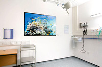 PhotoAcrylic, 1.35m x 0.9m, Emergency Department, Carmarthen Hospital