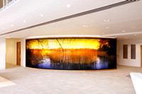 PhotoGlassWorks Back Lit, 10m x 2.3m, Aviva Reed House