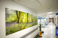 PhotoPanels, 2.7m x 0.9m Diptych Satin Finish, UHSM Manchester