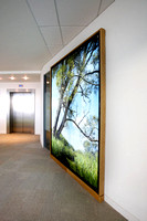 PhotoGlassWorks Back Lit, 2.2m x 2.3m, Aviva Willow House