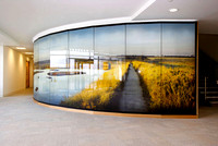 PhotoGlassWorks Back Lit, 10m x 2.3m, Aviva Willow House